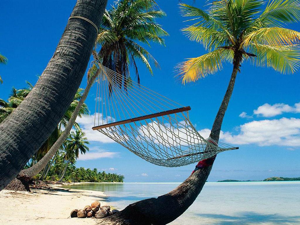 Dia nacional do turismo. panorama geral do turismo e da acessibilidade