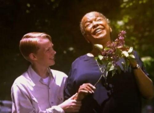 Mulher cega encontra em seu vizinho, um garoto de 12 anos, a amizade e a ajuda para enfrentar a vida