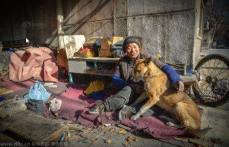 A leal cachorra vai a restaurantes locais para comer, mas sempre volta para a tenda de seu dono para fazer-lhe companhia