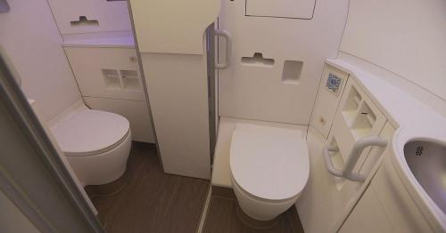 Entrar e sair do avião é agora mais fácil, mas a utilização das casas de banho pode ser um desafio, especialmente, para cadeiras de rodas