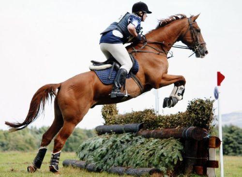 Em relato à BBC, colunista de jornal britânico que sofreu acidente de cavalo há cinco anos, conta que não consegue aceitar deficiência