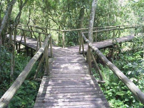 Projeto no Parque Ecológico Maracajá - SC inclui acessibilidade