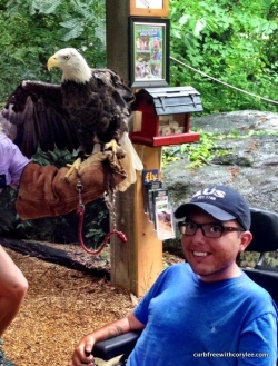 This bald eagle wasn't too fond of me to say the least…