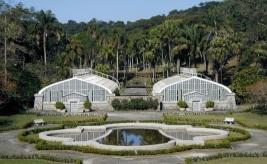 Estufas Jardim Botânico
