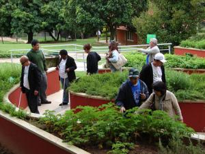 Jardim Sensorial - Jardim Botânico