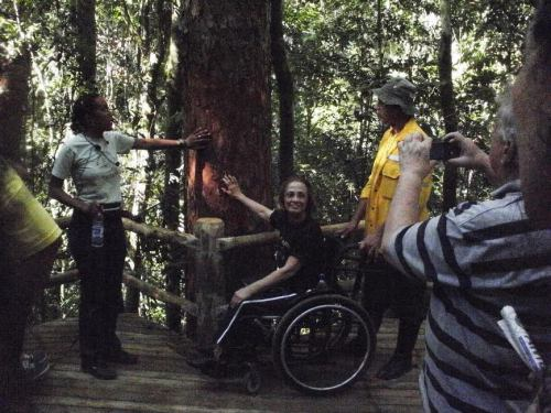 Passarelas permitem a circulação de pessoas usuárias de cadeira de rodas