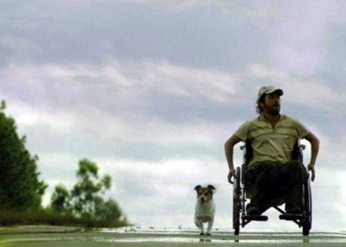 el-largometraje-cuenta-la-historia-de-un-joven-discapacitado-motriz-que-emprende-un-viaje-en-su-silla-de-ruedas-entre-pueblos-del-interior-de-la-argentina