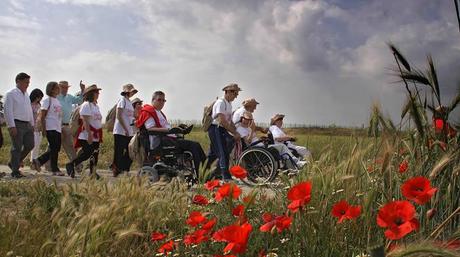 grupo-de-peregrinos-con-personas-en-sillas-de-ruedas-en-el-camino-de-santiago