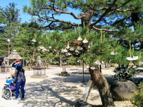chion-temple-grounds-at-amanohashidate-kyoto-japan-there-is-little-to-no-information-online-in-english-about-accessibility