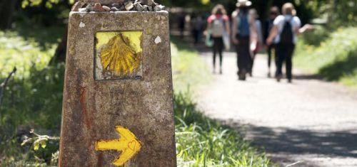la-accesibilidad-del-camino-de-santiago-puede-convertirse-en-una-oportunidad-de-negocio